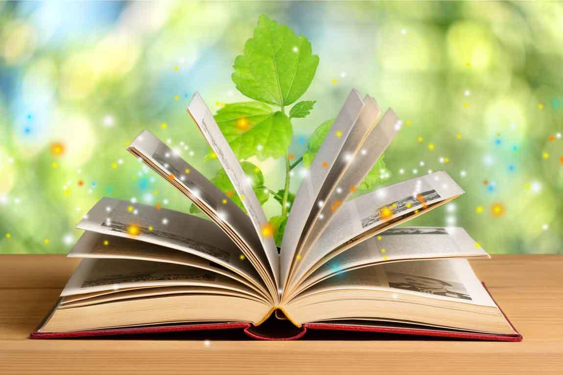 Veganer Buchdruck ist die tier- und umweltfreundliche Alternative zum konventionellen Buchdruck
